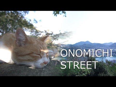 尾道ストリート 素敵な街並みと猫