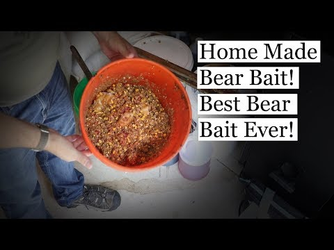 Best Bear Bait Ever! Fast, Easy, And Cheap To Make