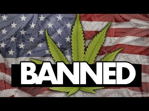 Investing In WEED STOCKS Can Get You BANNED from US!?!? 👮❌