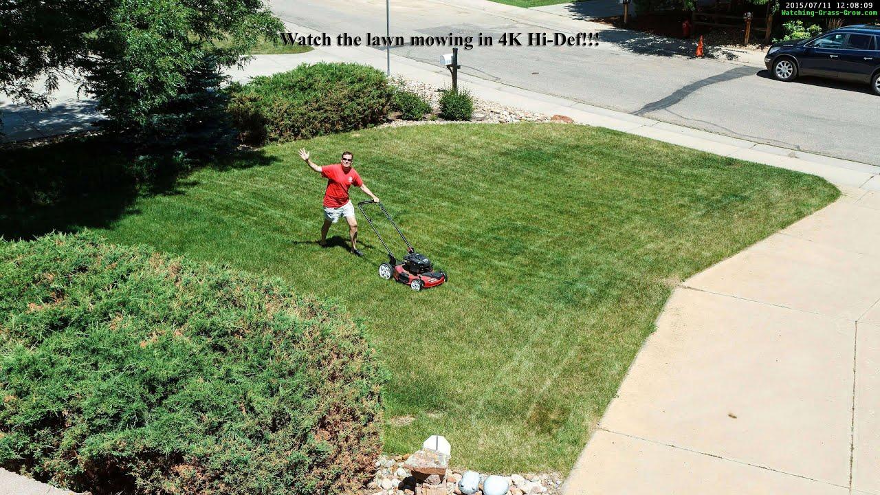 3081fecf3f9d20 Watching Grass G