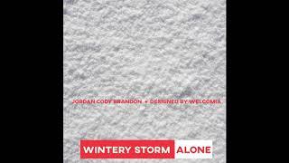 Wintery Storm Alone - Jordan Cody Brandon