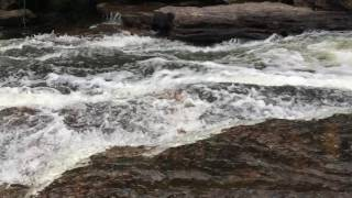 Youghiogheny River in Swallow Falls State Park | TheEnterprise87