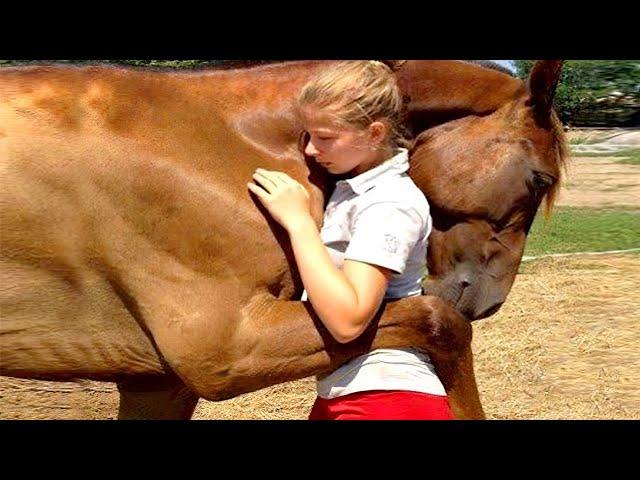 8 Animales que SALVARON LA VIDA de Personas