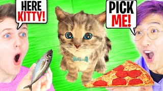 LANKYBOX ADOPTS A KITTEN!? (*LITTLE KITTEN ADVENTURES* PET CARE GAME!)