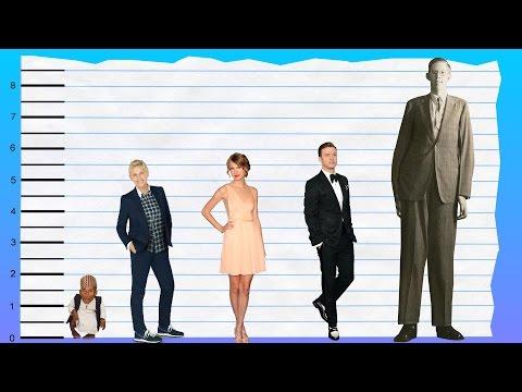 How Tall Is Ellen DeGeneres? - Height Comparison!