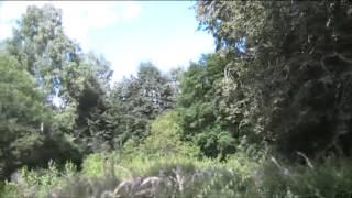видео Берново