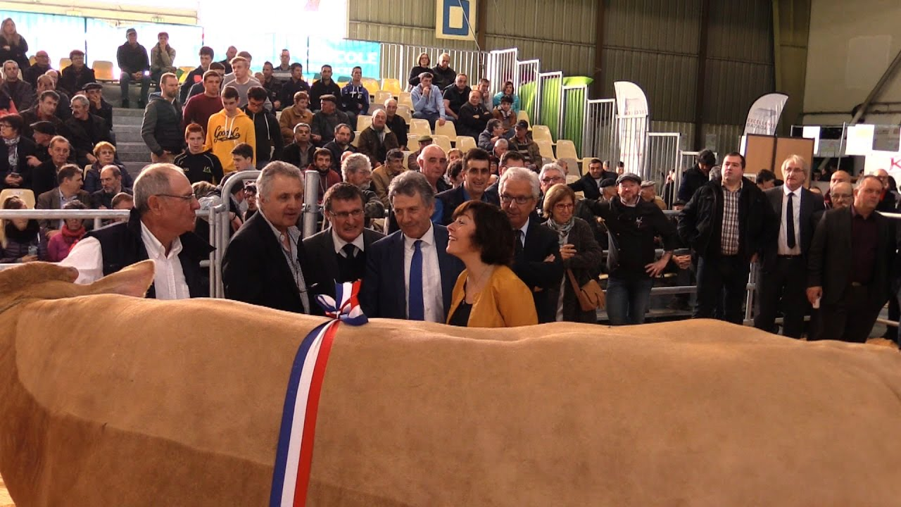 ouverture salon agricole tarbes 2017 youtube
