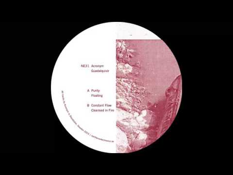 Acronym - Purity [NE31]
