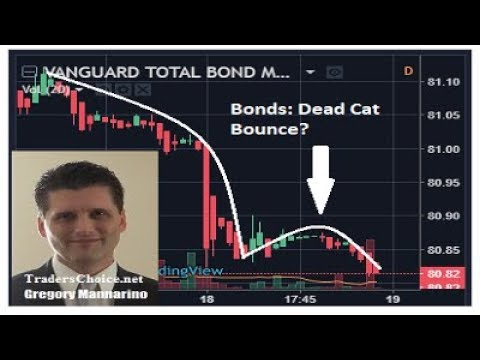 SPECIAL REPORT: The Moment Of Truth For The Bond Market Has Arrived. By Gregory Mannarino