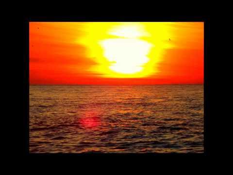 Клип Ocean - Tree