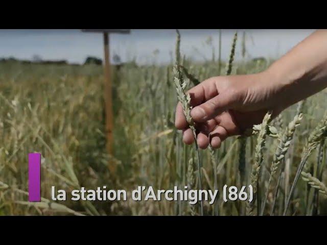 Station expérimentale dArchigny