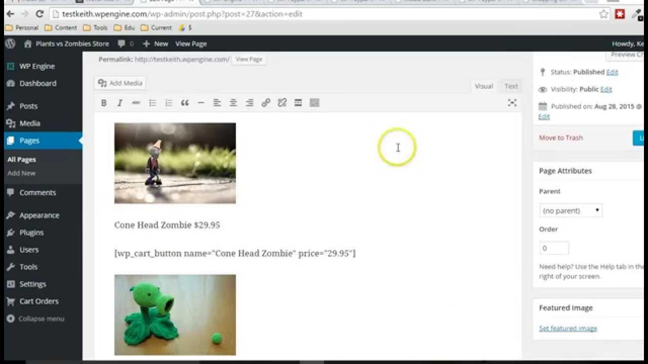 how to show wordpress online
