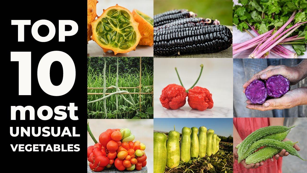 Top 10 Weird Vegetables 8