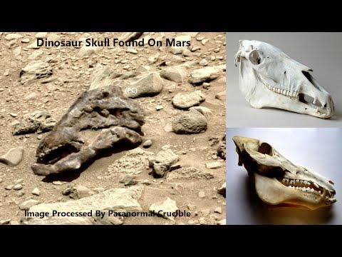 Para ufólogos, imagem da NASA revela suposto crânio de dinossauro em Marte