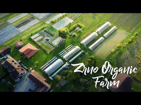 BREATHTAKING Farm Pioneering Organics in Croatia!