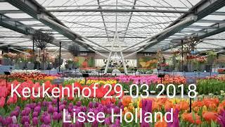 Keukenhof Lisse Holland