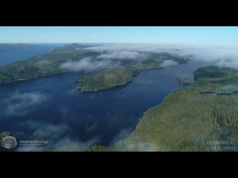 God's Pocket - British Columbia Epic Aerial and Wide Angle Underwater Video Stock Footage