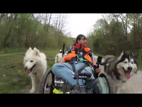 Urban Mushing the Panhandle Trail - Part 1 of 5 - April 28, 2017