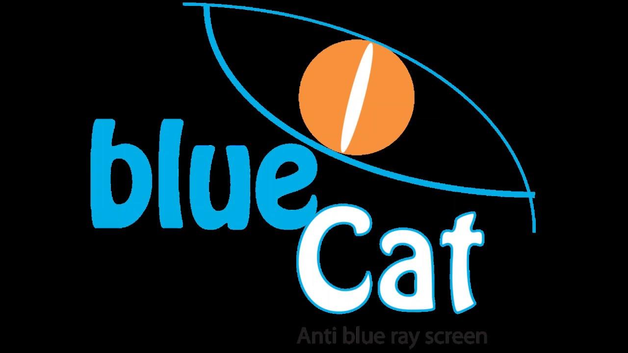 LUNETTES BLUECAT - YouTube 6eda25a70c9f