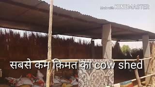 गाय का सबसे सस्ता शेड कैसे बनाये low cost cow shed