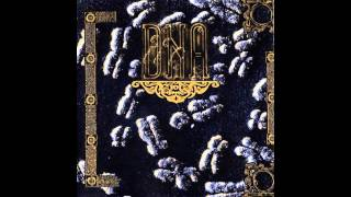 DNA - DNA (Last Live At CBGB