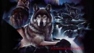 Run Wolf Sister ~ Lana Sister