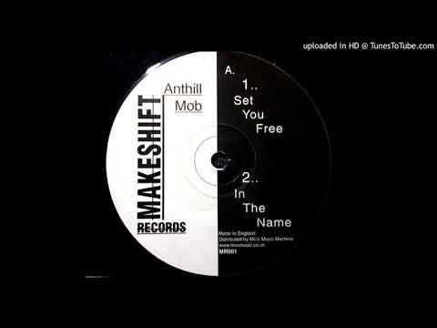 Anthill Mob - Set You Free (Makeshift Records - MR001)