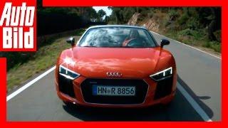 Fahrbericht: Audi R8 Spyder / 2017 / Runter mit dem Dach! / Review / Sound/Testfahrt