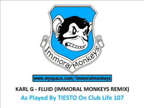 Karl G - Fluid (Immoral Monkeys Remix) Tiesto
