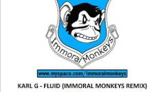 Karl G - Fluid (Immoral Monkeys Remix) Tiesto