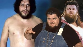 Andre the Giant vs Giant Haystacks & Haystacks Calhoun
