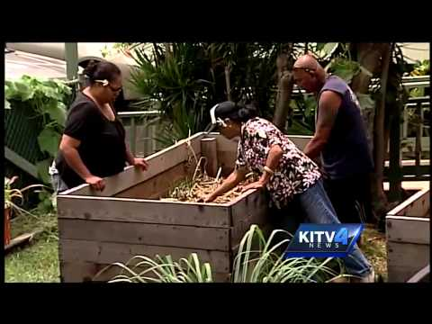 Where You Live: Waimanalo