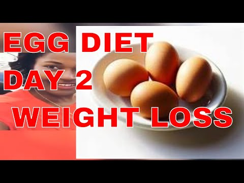 egg-diet-review-:-apple-cider-vinegar-for-weight-loss-day-2-counting-calories-|-lost-belly-fat