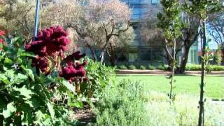 Good Life Garden - University of California Davis