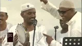 عصام محمد نور- الشاغلين فؤادي - أغاني وأغاني 2014 - الحلقة الخامسة