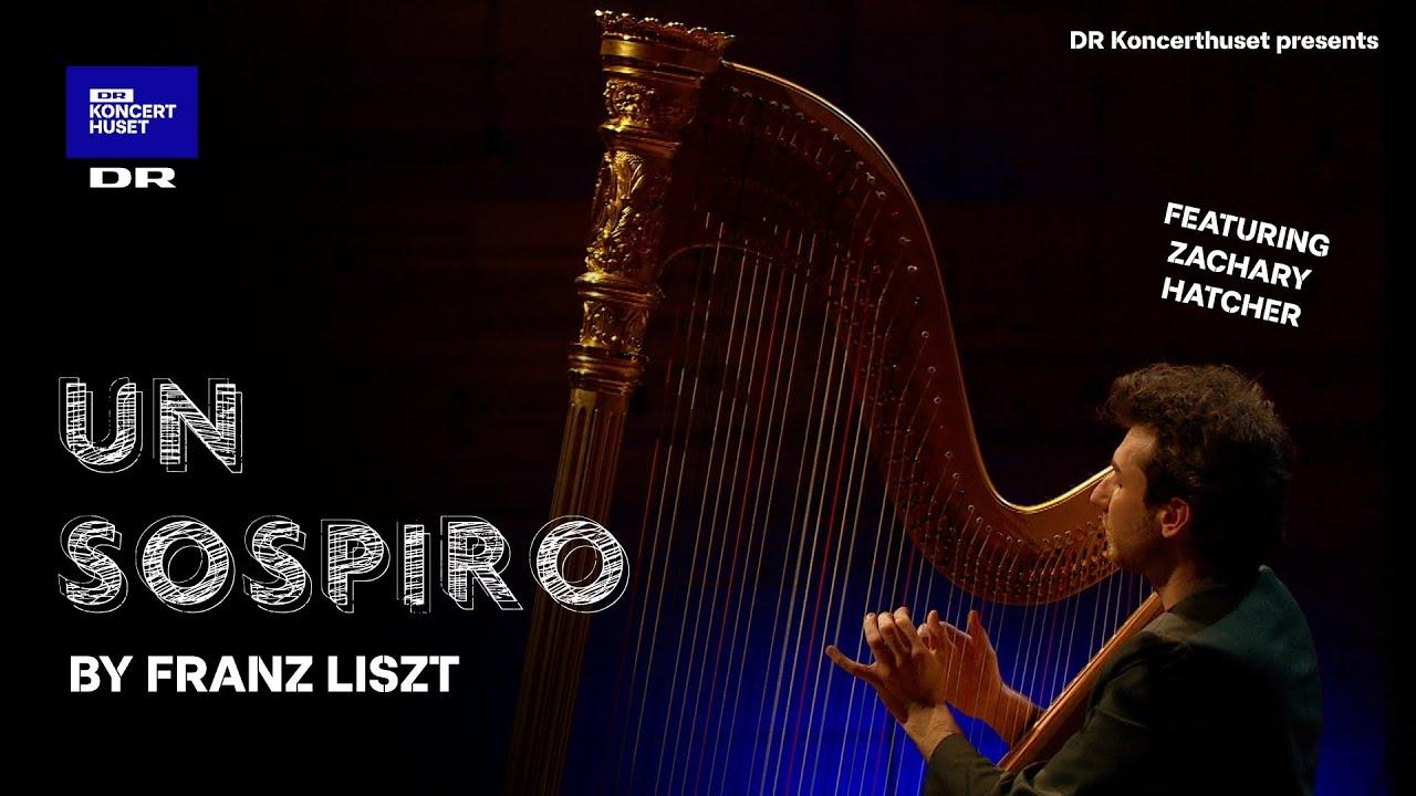 Franz Liszt's Un Sospiro // Solo Harp (Live)