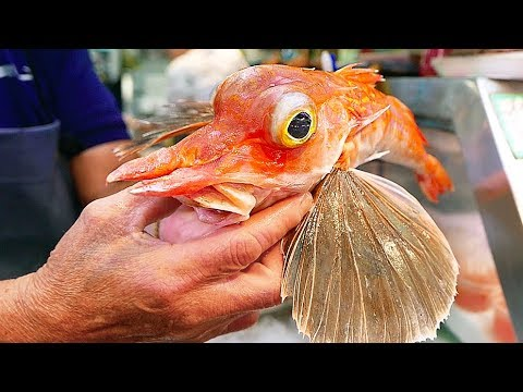 Japanese Street Food - ORANGE FLYING FISH Sashimi Okinawa Seafood Japan