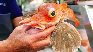 Japanese Street Food - ORANGE FLYING FISH Sashimi Okinawa Seafood Japan