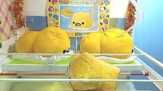 Got [Sanrio Characters x Monimals - Gudetama Mega Jumbo Cool Taste Plushy]!!