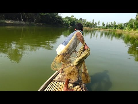Net Fishing | Catching Fish With Cast Net | Net Fishing in the village (Part-132)