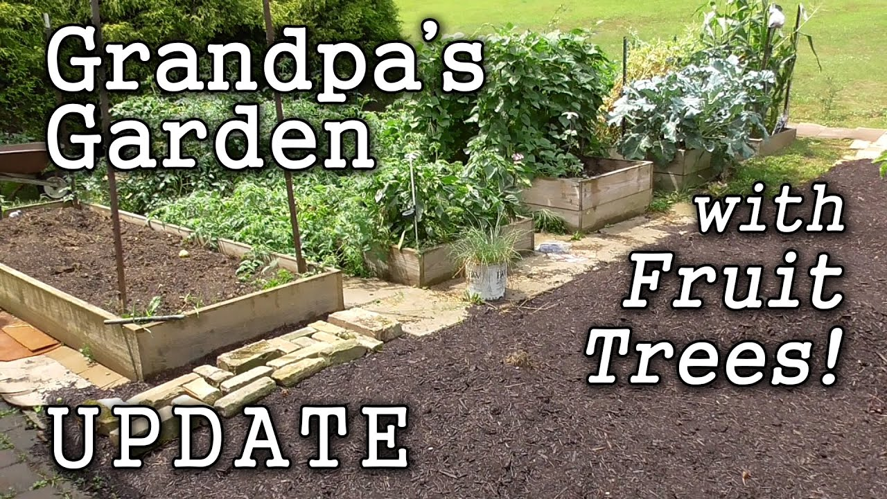 Raised Beds Edible Landscape Grandpa 39 s Garden Year 2