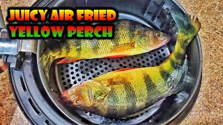 How to Air Fried Whole Yellow Perch Fish for Juiciness