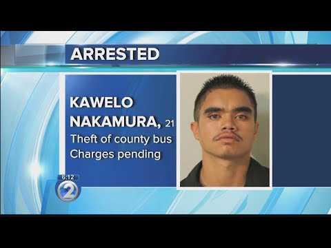 Man charged after Hawaii County bus stolen, involved in crash