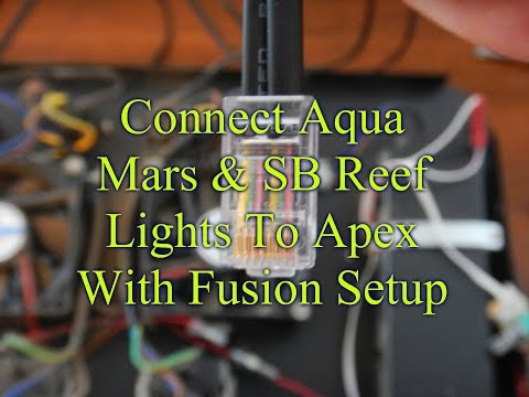 Connect Chinese LEDs & SB Reef Light To Apex Controller & Programming | Apex Controller