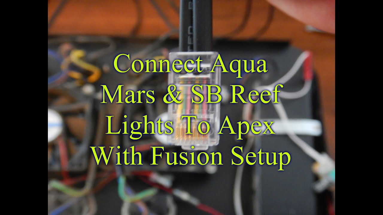 Connect Chinese LEDs & SB Reef Light To Apex Controller ... on phoenix wiring diagram, neptune apex serial number, octopus wiring diagram, fan wiring diagram, neptune apex power supply,