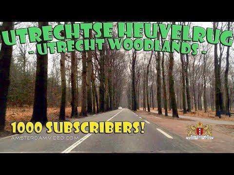 Utrechtse Heuvelrug & 1000 Subscribers (3.18.14 - Day 1356)