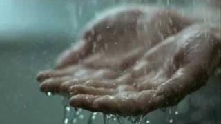 Brizo Shower Faucets