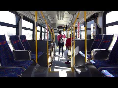 Ride On: Brampton Transit #1713 on route 5 Bovaird