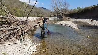 Прогулялся по речке с кастинговой сетью рыбалка кастинговой сетью
