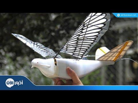 الصين تتجسس على مواطنيها بالطيور  - نشر قبل 2 ساعة